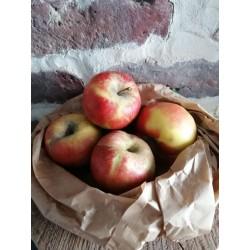 La pomme topaz - le Kg